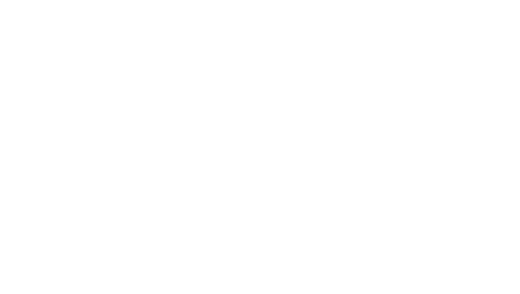 Albany Youth Support Association